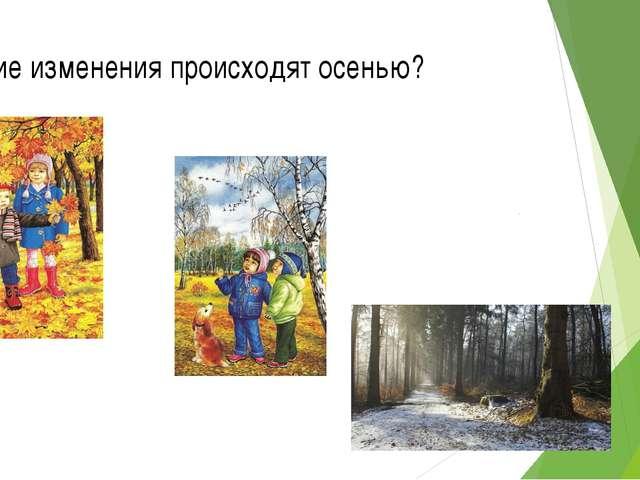 Какие изменения происходят осенью?