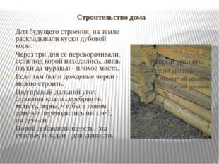 Строительство дома Для будущего строения, на земле раскладывали куски дубовой