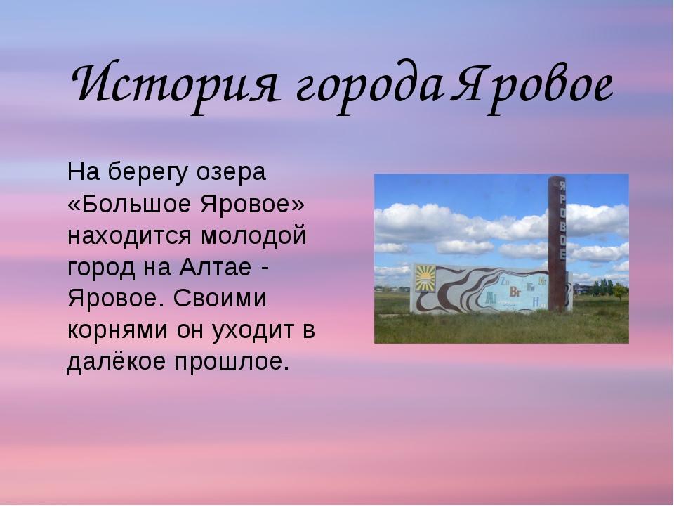 На берегу озера «Большое Яровое» находится молодой город на Алтае - Яровое....