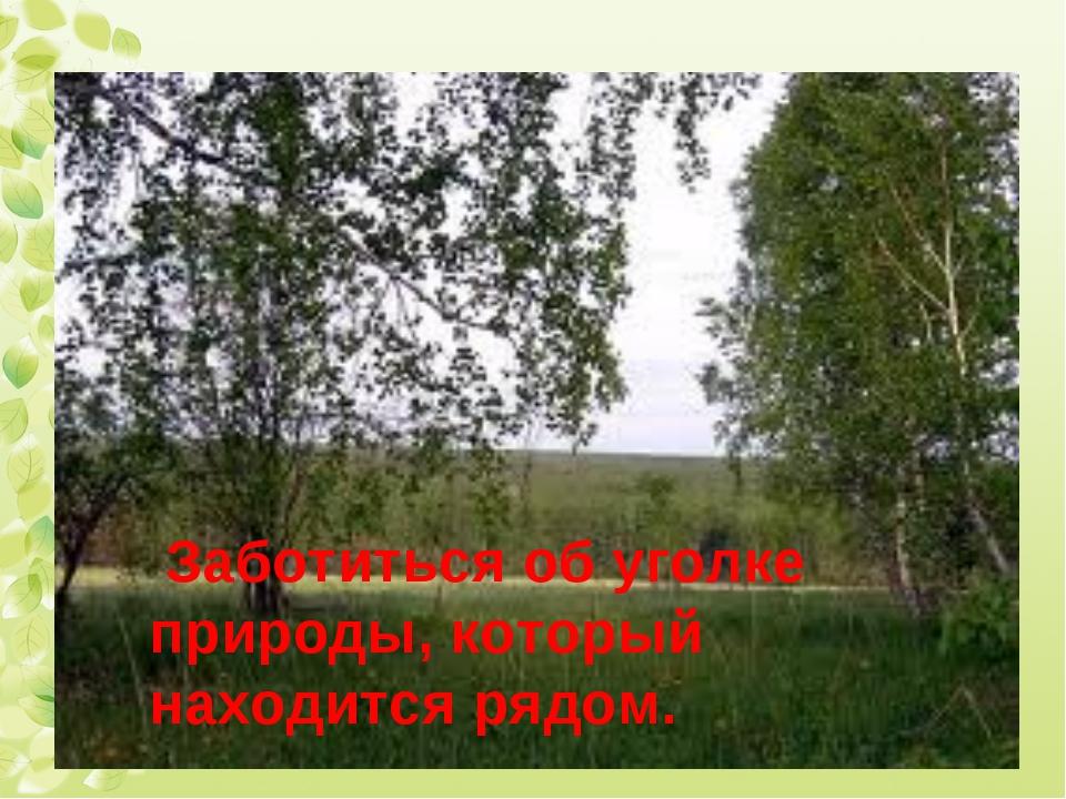 Заботиться об уголке природы, который находится рядом.