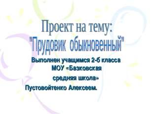 Выполнен учащимся 2-б класса МОУ «Базковская средняя школа» Пустовойтенко Але