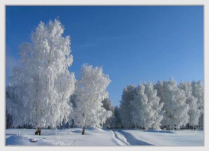 Фотография Зимняя дорога из раздела пейзаж 730973 - фото.сай…