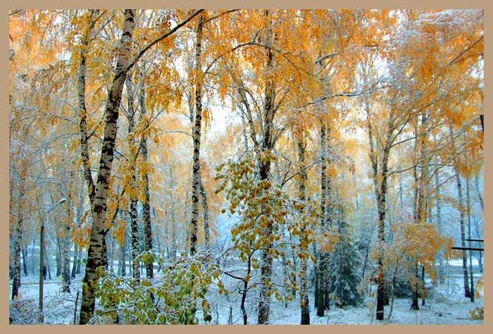 Пословицы и загадки про осень - 3 Осень 4 - Природа - Фото