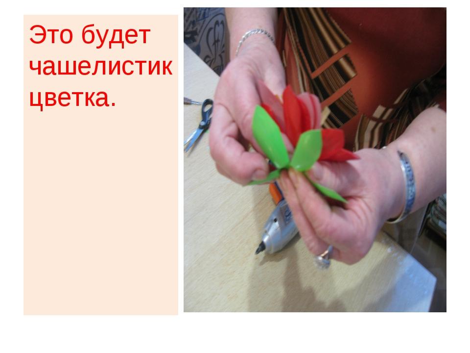 Это будет чашелистик цветка.