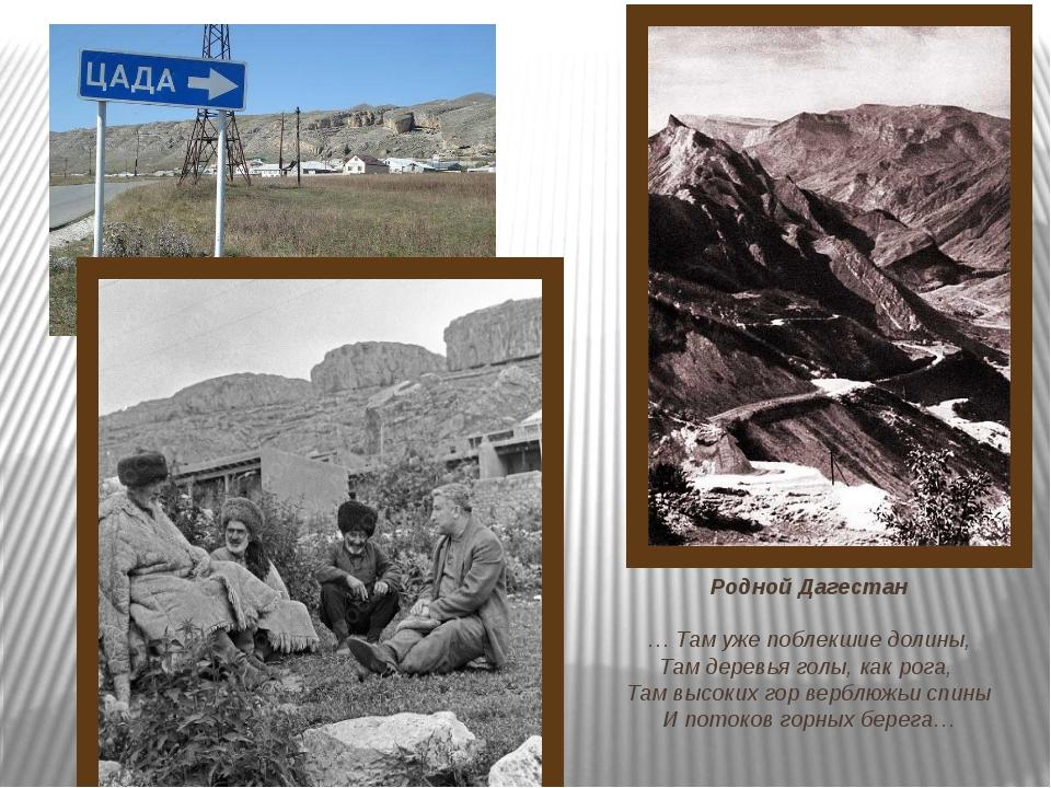 Родной Дагестан … Там уже поблекшие долины, Там деревья голы, как рога, Там в...