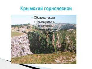 Крымский горнолесной