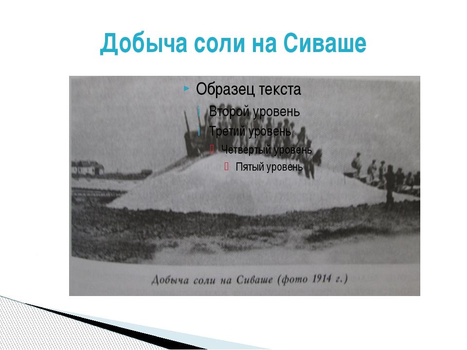 Добыча соли на Сиваше