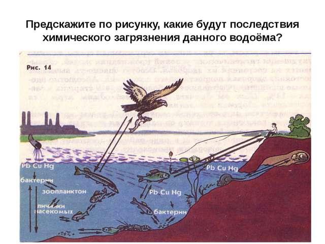 Предскажите по рисунку, какие будут последствия химического загрязнения данно...