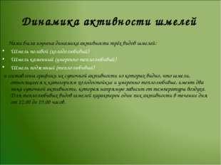 Динамика активности шмелей Нами была изучена динамика активности трёх видов ш