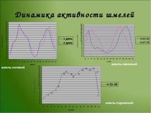 Динамика активности шмелей шмель полевой шмель каменный шмель подземный