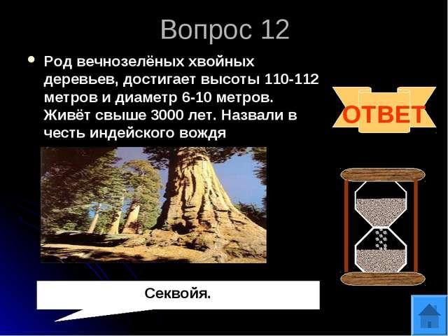 Вопрос 12 Род вечнозелёных хвойных деревьев, достигает высоты 110-112 метров...