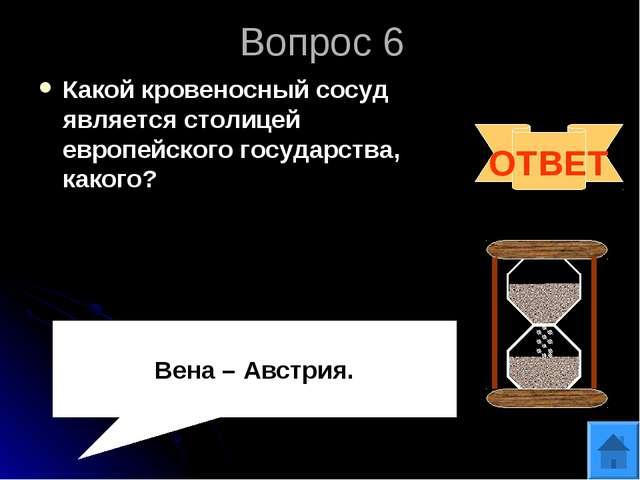 Вопрос 6 Какой кровеносный сосуд является столицей европейского государства,...