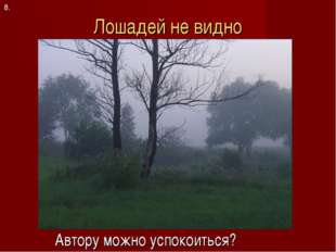 Лошадей не видно Автору можно успокоиться? 8.