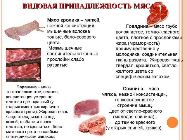 ВИДОВАЯ ПРИНАДЛЕЖНОСТЬ МЯСА. Мясо кролика – мягкой, нежной консистенции, мыше...
