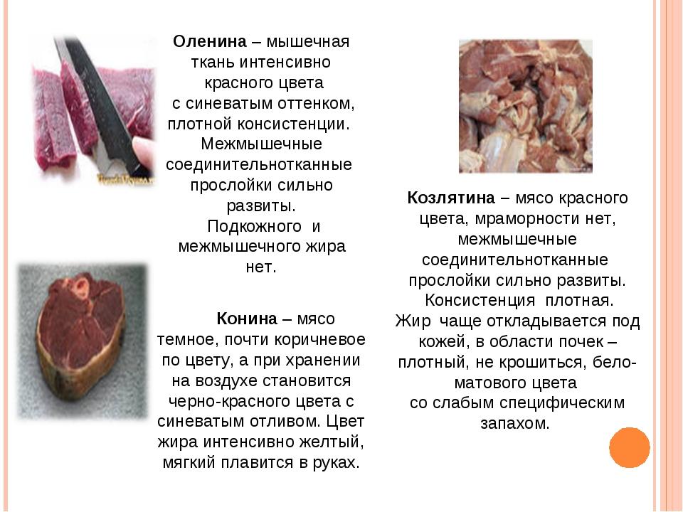 Оленина – мышечная ткань интенсивно красного цвета с синеватым оттенком, плот...