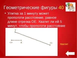 Геометрические фигуры 40 Улитка за 1 минуту может проползти расстояние, равно