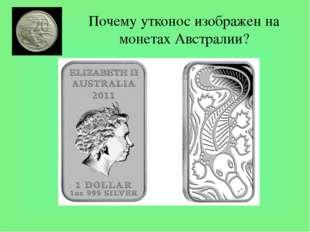 Почему утконос изображен на монетах Австралии? Утконос - удивительное создани