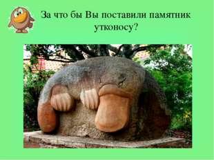 За что бы Вы поставили памятник утконосу? За что бы Вы поставили памятник утк