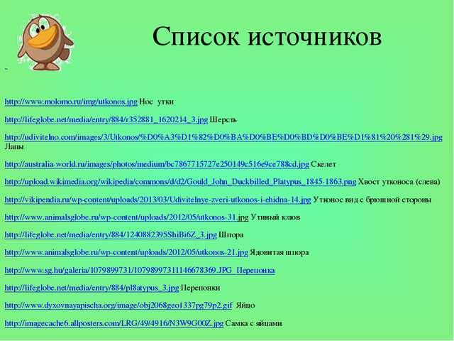 Список источников http://www.molomo.ru/img/utkonos.jpg Нос утки http://lifegl...