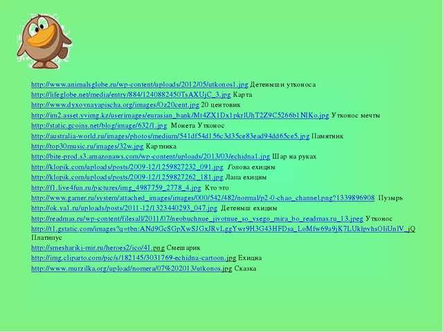 http://www.animalsglobe.ru/wp-content/uploads/2012/05/utkonos1.jpg Детеныши у...