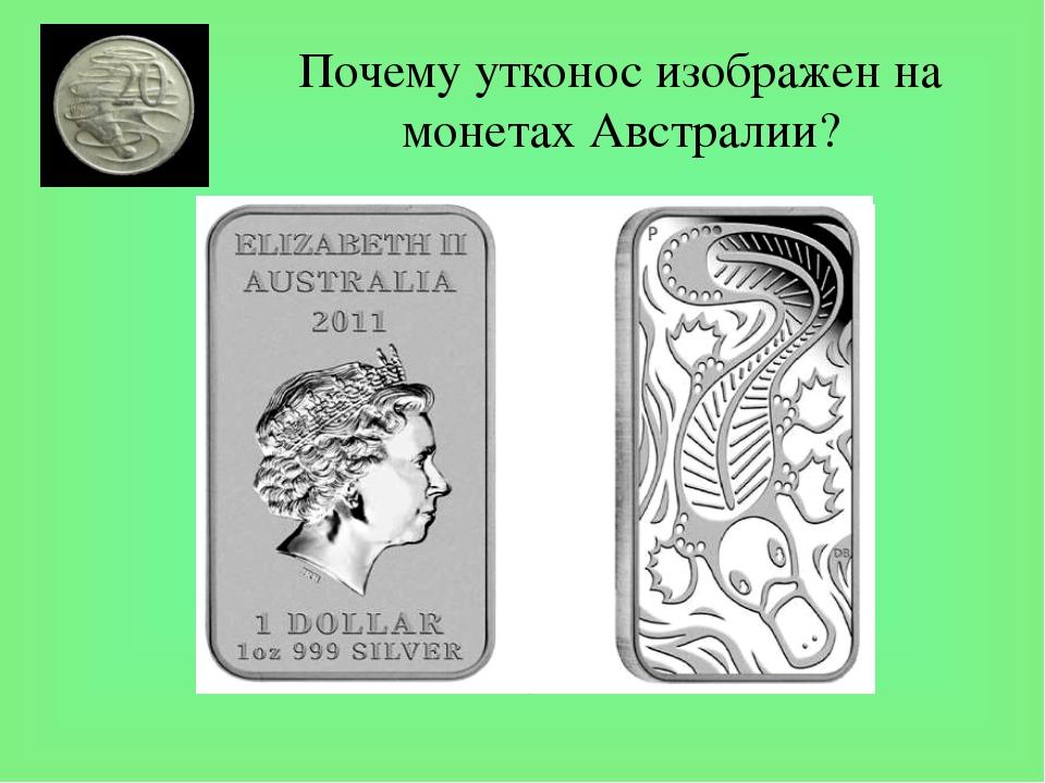 Почему утконос изображен на монетах Австралии? Утконос - удивительное создани...