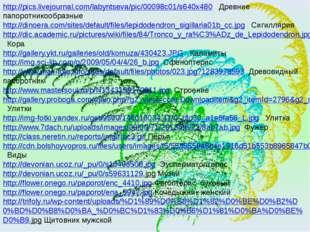 http://pics.livejournal.com/labyntseva/pic/00098c01/s640x480 Древние папоротн