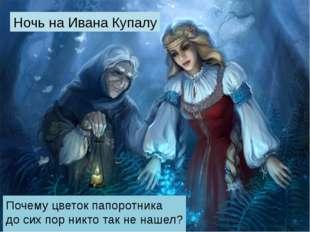 Ночь на Ивана Купалу Почему цветок папоротника до сих пор никто так не нашел?