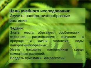 Цель учебного исследования: Изучить папоротникоообразные растения Задачи: Зна