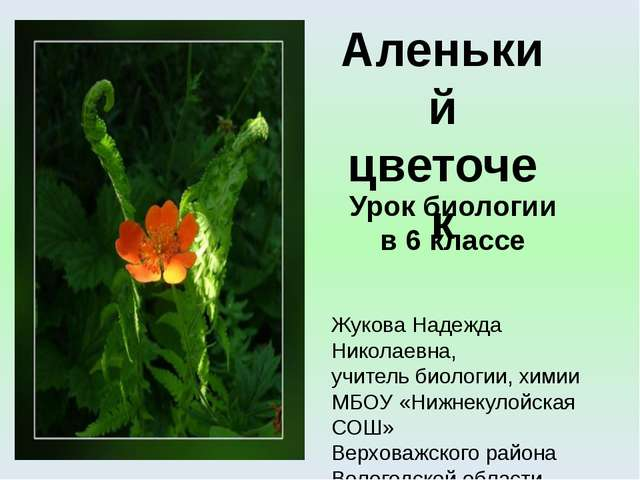Урок биологии в 6 классе Жукова Надежда Николаевна, учитель биологии, химии М...