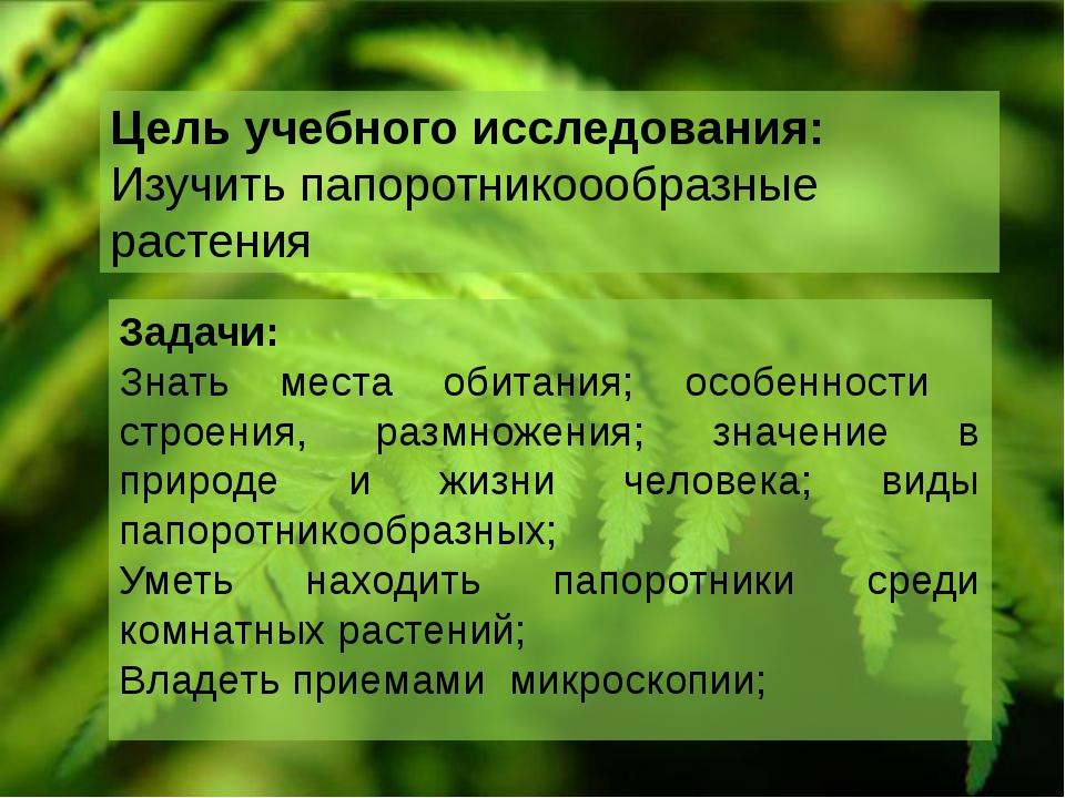 Цель учебного исследования: Изучить папоротникоообразные растения Задачи: Зна...