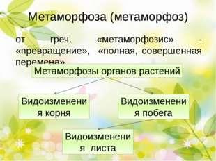 Метаморфоза (метаморфоз) от греч. «метаморфозис» - «превращение», «полная, со