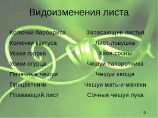 Видоизменения листа Колючки барбариса Колючки характерны для растений, обитаю