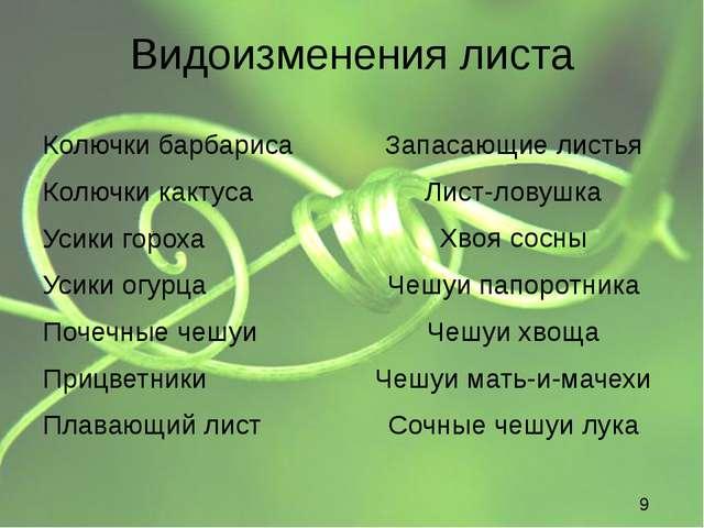 Видоизменения листа Колючки барбариса Колючки характерны для растений, обитаю...