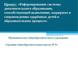 Проект: «Реформирование системы дополнительного образования, способствующей в