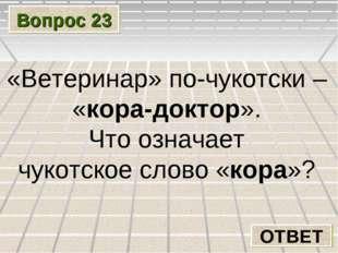 Вопрос 23 ОТВЕТ «Ветеринар» по-чукотски – «кора-доктор». Что означает чукотск