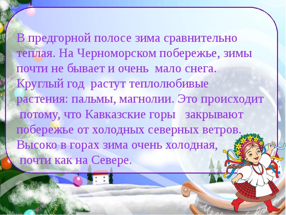 В предгорной полосе зима сравнительно теплая. На Черноморском побережье, зим...