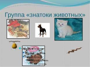 Группа «знатоки животных»