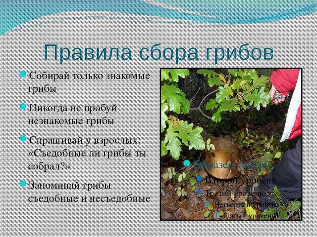 Правила сбора грибов Собирай только знакомые грибы Никогда не пробуй незнаком...
