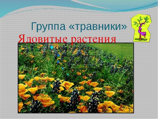 Группа «травники» Ядовитые растения