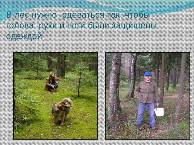 В лес нужно одеваться так, чтобы голова, руки и ноги были защищены одеждой