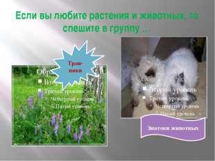 Если вы любите растения и животных, то спешите в группу … Трав-ники Знатоки ж