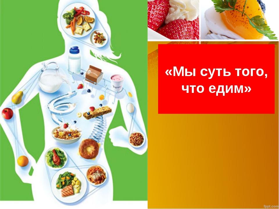 «Мы суть того, что едим»