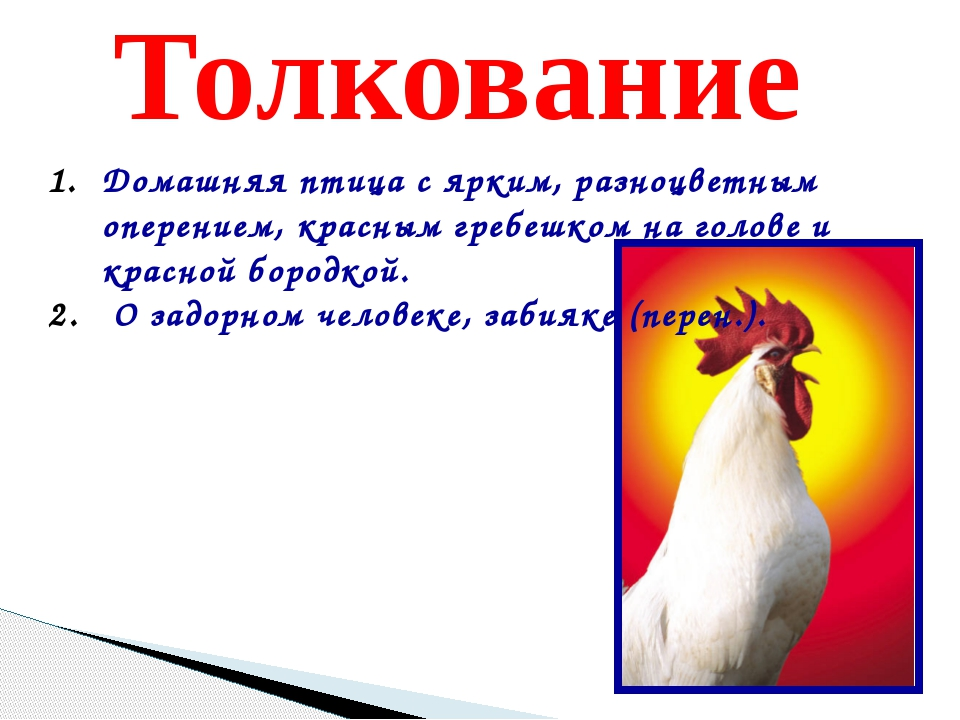 Толкование Домашняя птица с ярким, разноцветным оперением, красным гребешком...