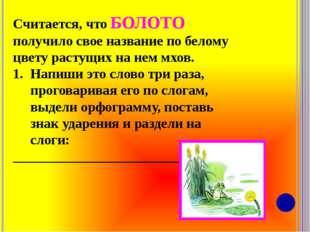 Считается, что БОЛОТО получило свое название по белому цвету растущих на нем