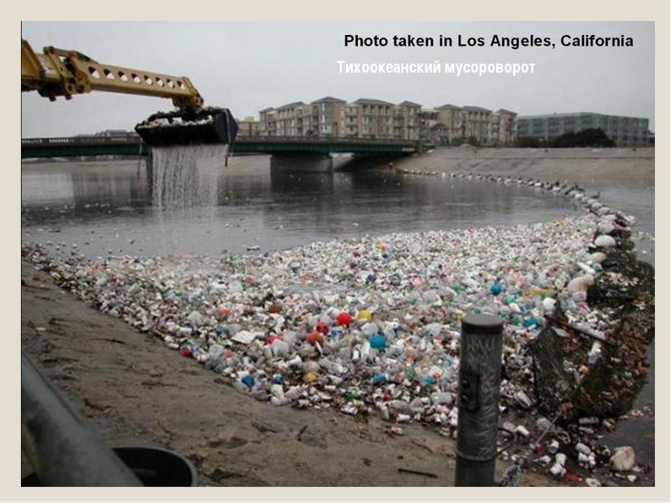 Тихоокеанский мусороворот