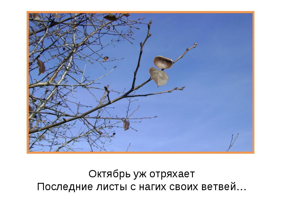 Октябрь уж отряхает Последние листы с нагих своих ветвей…