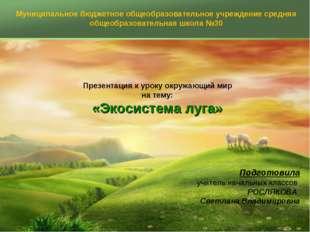 Презентация к уроку окружающий мир на тему: «Экосистема луга» Подготовила уч