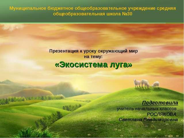 Презентация к уроку окружающий мир на тему: «Экосистема луга» Подготовила уч...
