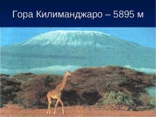 Гора Килиманджаро – 5895 м
