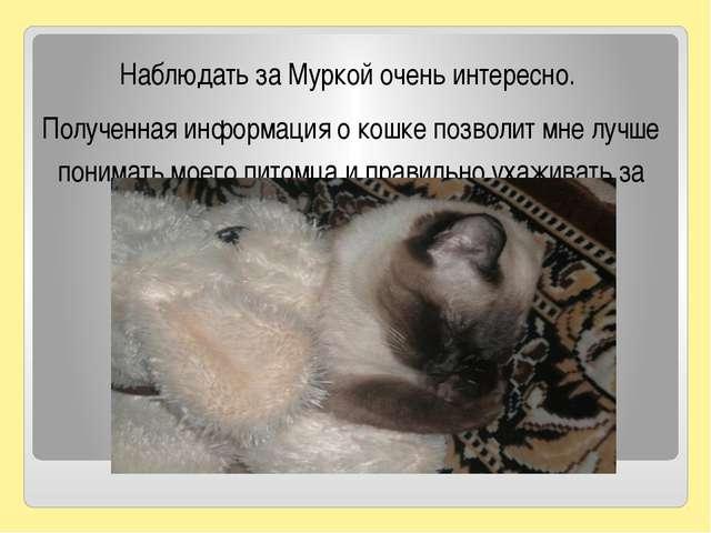 Наблюдать за Муркой очень интересно. Полученная информация о кошке позволит...